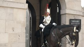 Opinión amplia un guardia de caballo de servicio