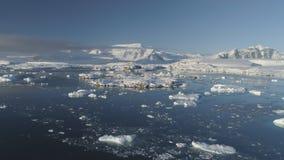 Opinión baja vernadsky polar del abejón de la Antártida metrajes