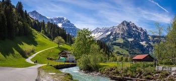 Opinión colorida del verano de la escena al aire libre hermosa en el cantón o Fotografía de archivo libre de regalías
