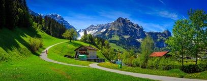 Opinión colorida del verano de la escena al aire libre hermosa en el cantón o Foto de archivo libre de regalías