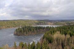 Opinión congelada del lago y del bosque del punto de vista Fotografía de archivo