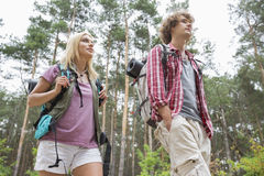 Opinión de ángulo bajo de caminar los pares que miran lejos en bosque Fotos de archivo