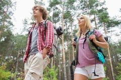 Opinión de ángulo bajo de caminar los pares que miran lejos en bosque Imagen de archivo libre de regalías