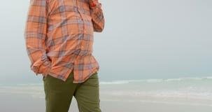 Opinión de ángulo bajo el hombre afroamericano mayor activo que habla en el teléfono mientras que camina en la playa 4k almacen de video
