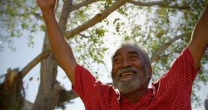 Opinión de ángulo bajo el hombre mayor afroamericano activo que realiza yoga en el jardín de la clínica de reposo 4 almacen de video