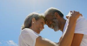 Opinión de ángulo bajo de los pares afroamericanos mayores activos felices que abrazan en la playa en la sol 4k metrajes