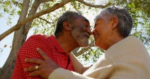 Opinión de ángulo bajo de los pares mayores afroamericanos activos que mira cara a cara uno a 4k almacen de video