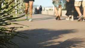 Opinión de ángulo bajo, los pies de turistas que caminan en la playa -4K metrajes