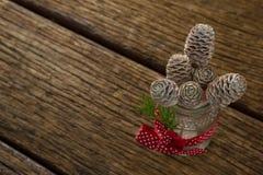 Opinión de alto ángulo de los conos del pino en el tarro de cristal Imagen de archivo libre de regalías