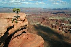 Opinión de Canyonlands Imagen de archivo