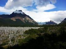 Opinión de Cerro Torre foto de archivo libre de regalías