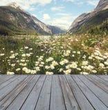 Opinión de desatención de la cubierta de madera de montañas Fotos de archivo libres de regalías