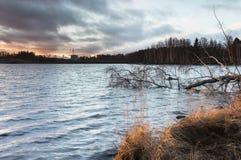 Opinión de diciembre del lago en Finlandia Fotografía de archivo