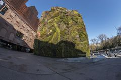 Opinión de Fisheye 180 de un jardín vertical en la ciudad de Madrid fotos de archivo