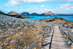 Opinión de islas de las Islas Galápagos Imagenes de archivo