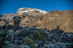 Opinión de Kilimanjaro de la ruta de Machame Fotos de archivo libres de regalías
