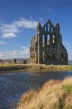 Opinión de la abadía de Whitby Fotos de archivo