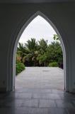 Opinión de la arboleda de la palma en silueta negra del arco Imagen de archivo libre de regalías