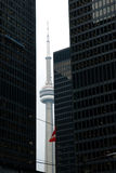 Opinión de la calle, abajo ciudad, Toronto, Ontario, Canadá Fotografía de archivo libre de regalías