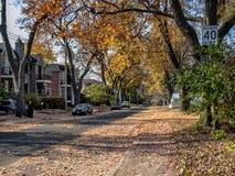 Opinión de la calle del otoño fotos de archivo