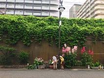 Opinión de la calle de la naturaleza de Osaka Imagen de archivo