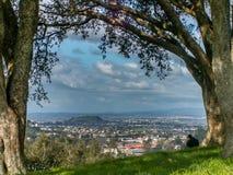Opinión de la ciudad de Auckland enmarcada Fotos de archivo