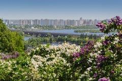 Opinión de la ciudad de Kyiv en primavera fotos de archivo libres de regalías
