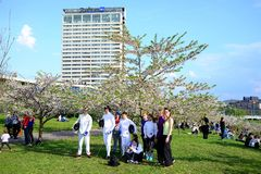 Opinión de la ciudad de Vilna con la gente que descansa sobre la hierba Fotografía de archivo