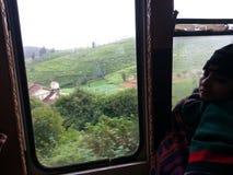Opinión de la colina del tren de la montaña Fotografía de archivo libre de regalías