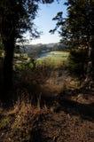 Opinión de la colina de Surrey Fotografía de archivo