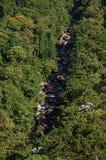 Opinión de la descripción de colinas y cubierta por los bosques alrededor de una corriente en el parque de Itatiaia Imagen de archivo libre de regalías