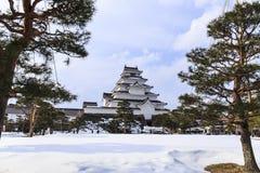 Opinión de la fuente del castillo de Tsuruga Fotos de archivo