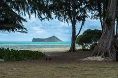 Opinión de la isla del conejo de la playa de Waimanalo, Oahu, Hawaii fotografía de archivo