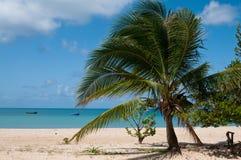 Opinión de la isla del maíz Imágenes de archivo libres de regalías