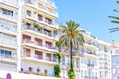 Opinión de la luz del día de la parte inferior a los balcones, a las palmeras y al pla del hotel fotos de archivo libres de regalías