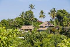 Opinión de la mañana de las palmeras y de las casas verdes del coco en Ubud, Bali, Indonesia Fotos de archivo libres de regalías