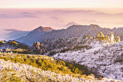 Opinión de la mañana de los picos de montaña Imagen de archivo libre de regalías