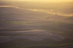 Opinión de la mañana del valle Foto de archivo