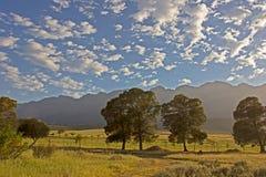 Opinión de la madrugada de montañas y del campo Fotografía de archivo