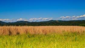 Opinión de la montaña y del valle en el condado de Saratoga NY Fotografía de archivo libre de regalías
