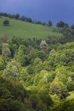 Opinión de la naturaleza en Stara Planina, Bulgaria. Foto de archivo