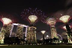 Opinión de la noche de la arboleda de Supertree con Marina Bay  foto de archivo
