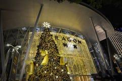 Opinión de la noche de la decoración de la Navidad en el camino de la huerta de Singapur Fotografía de archivo