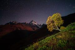 Opinión de la noche de la montaña de Ushba con el cielo estrellado oscuro Fotografía de archivo