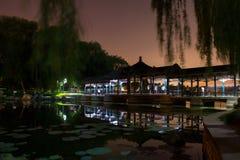 Opinión de la noche de un parque Foto de archivo libre de regalías
