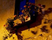 Opinión de la noche de Uzupis Fotografía de archivo