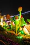 Opinión de la noche del objeto expuesto de Hong Kong Flower Show 2018 fotos de archivo