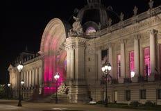 Opinión de la noche del palacio del Petit Palais fotografía de archivo libre de regalías