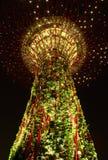 Opinión de la noche del solo árbol estupendo en el jardín de Singapur Imagen de archivo