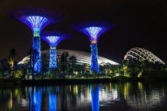 Opinión de la noche de jardines por la bahía en Singapur fotografía de archivo
